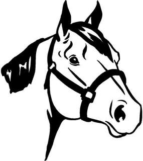 Quarter Horse Head Vinyl Decal Car Truck Window Sticker