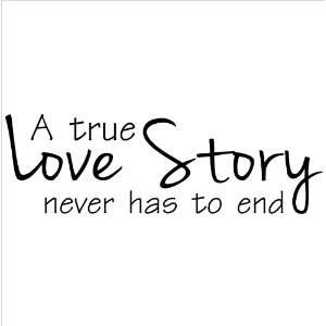 Love Story Never Has To End wall sayings vinyl lettering decal quote