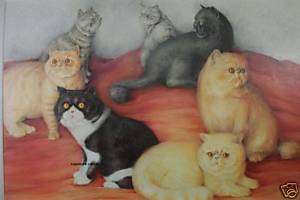 ORIGINAL EXOTIC SHORTHAIR CAT ART DRAWING PAINTING