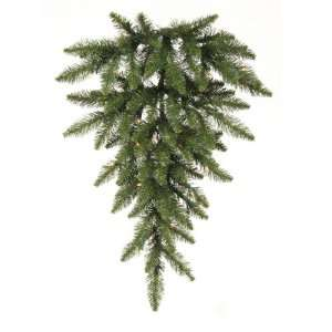 Green   Camdon Fir   35 Clear Dura Lit Lights   80 Tips   Vickerman