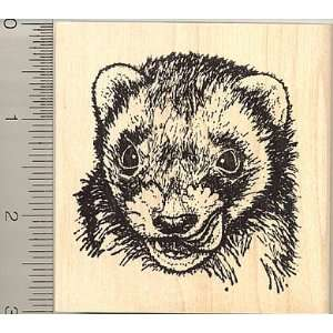 Malena, Ferret Rubber Stamp Arts, Crafts & Sewing